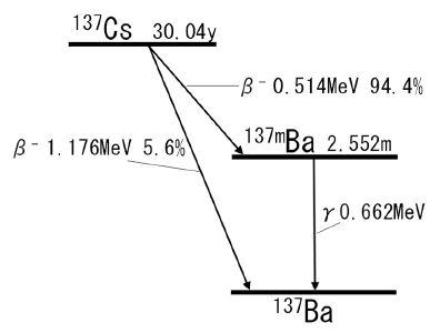 137cs137bma