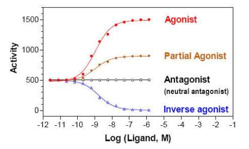 partial_agonist_ASK_tcm137-192021